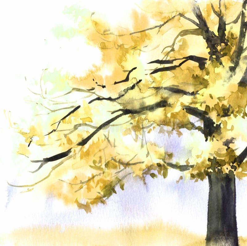 Gelber Baum des Aquarells Handgezogene Illustration f?r Karte, Postkarte, Abdeckung, Einladung, Gewebe lizenzfreie abbildung