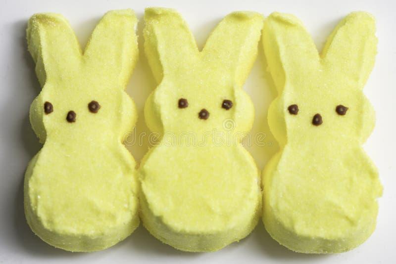 Gelber Bunny Marshmallows stockbild