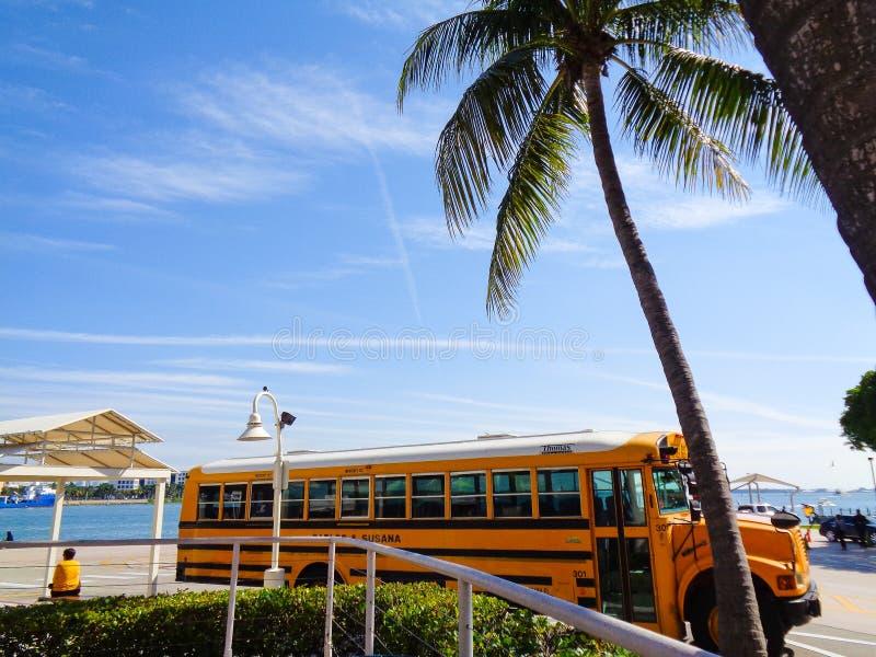 Gelber Bus in Florida stockfoto