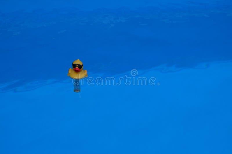 Gelber Ententhermometer auf blauem Wasser stockbild