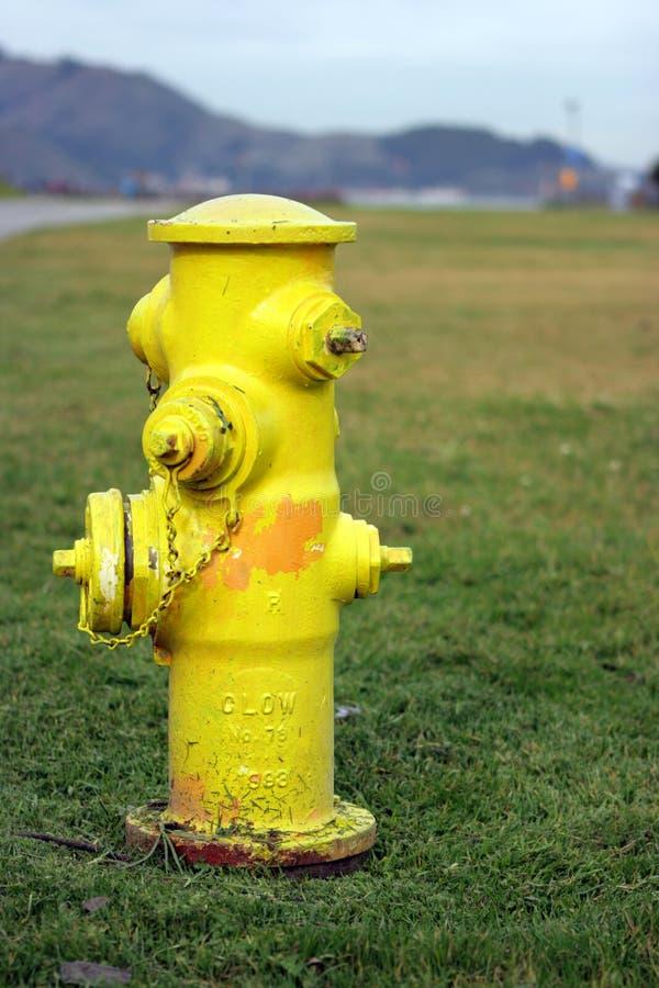 Gelber Fire-plug stockfotos