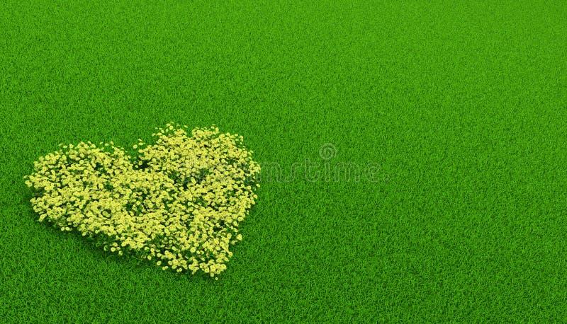 Gelber Flowerbed herein einer Form des Inneren stock abbildung