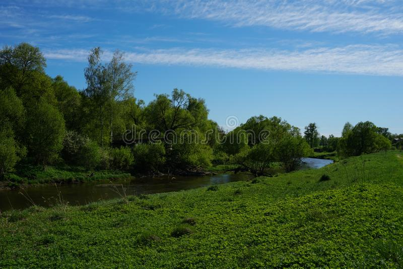 Gelber Fluss, der um grüne Bäume fließt stockfotos