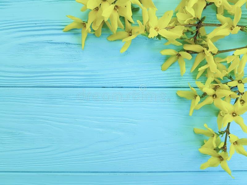 Gelber Herbst blüht natürliche Jahreszeit auf einem blauen hölzernen Hintergrund stockfoto