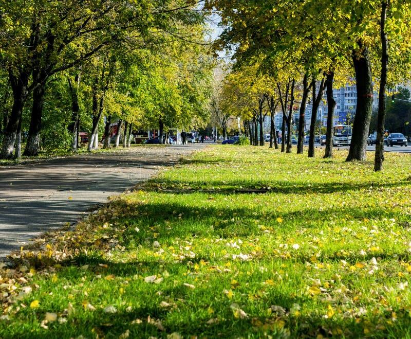 Gelber Herbst in der Metropole stockfoto