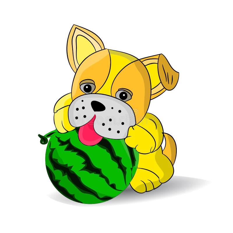 Gelber Hund, der mit Wassermelone, Karikatur auf weißem Hintergrund spielt vektor abbildung