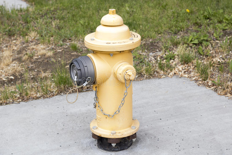 Gelber Hydrant lizenzfreie stockfotos