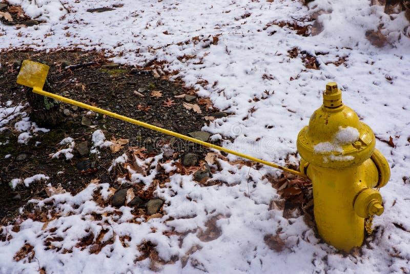 Gelber Hydrant lizenzfreie stockbilder