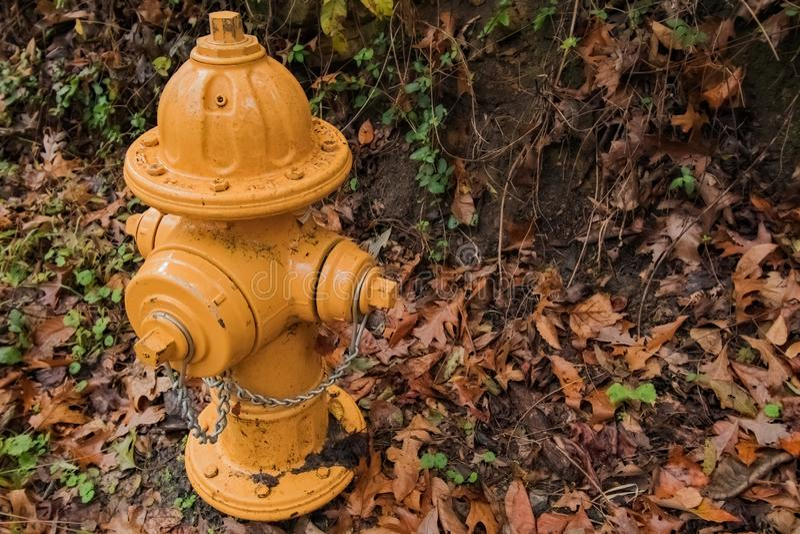 Gelber Hydrant im Fall stockbilder