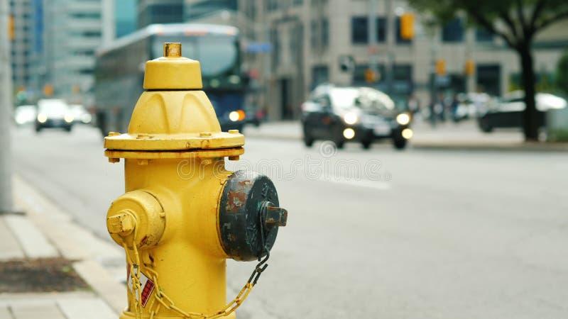 Gelber Hydrant im Hintergrund einer verkehrsreichen Straße in Toronto stockbild