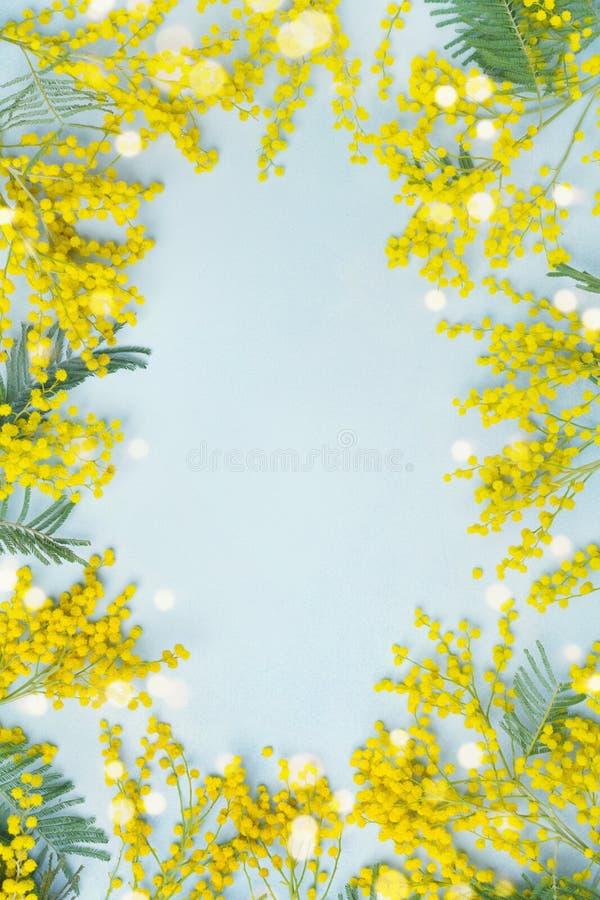 Gelber Mimosenblumenrahmen Frühlingskarte für Mutter-Tag oder Ostern lizenzfreie stockfotos