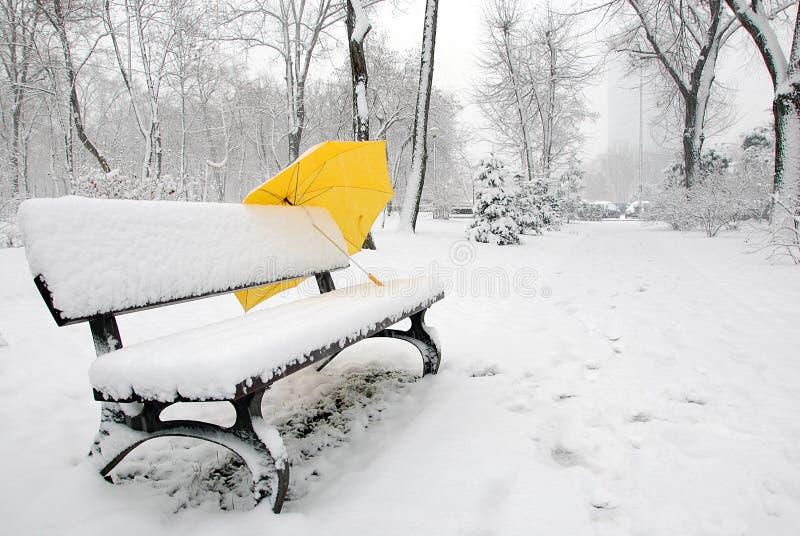 Gelber Regenschirm stockfoto