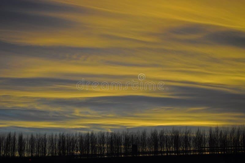 Gelber Sonnenuntergang lizenzfreies stockfoto