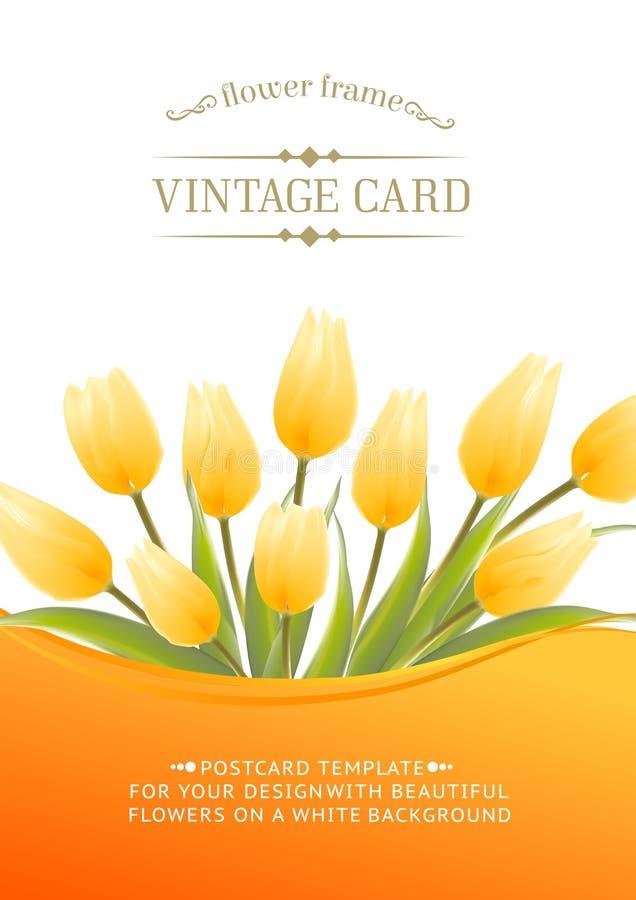 Gelber Tulpenfrühling blüht Blumenstrauß für Ihr Design. stock abbildung