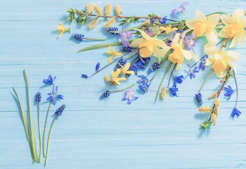 Gelber und blauer Frühling blüht auf hölzernem Hintergrund stockbilder