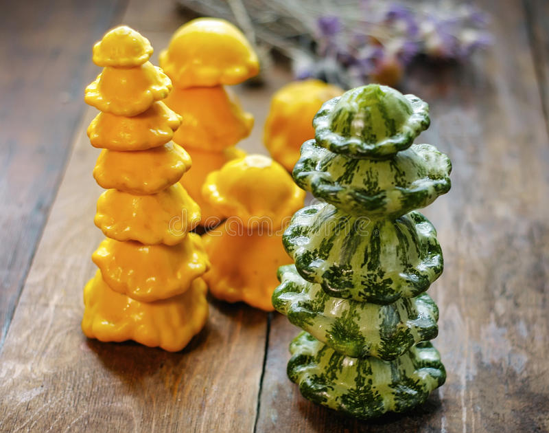 Gelber und grüner Kürbis stockbild