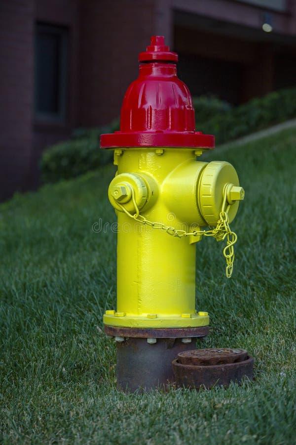 Gelber und roter Hydrant in die Stadt Wohn stockfotografie