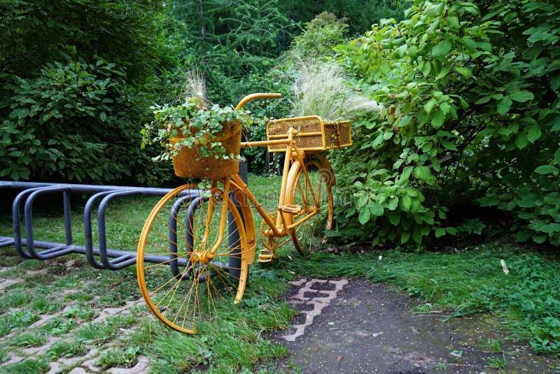 Gelbes altes Fahrrad im Park mit Blumentöpfen stockbild