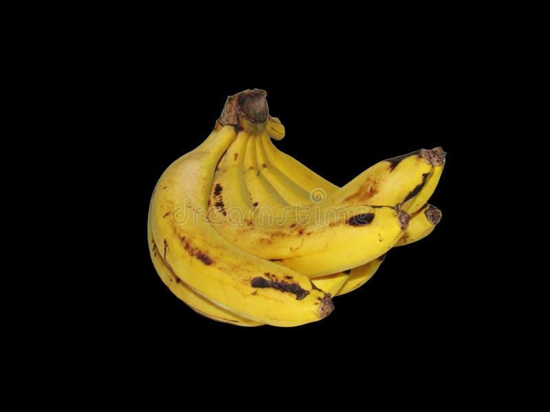 Gelbes Bananen-Bündel zentriert auf einem schwarzen Hintergrund lizenzfreies stockbild