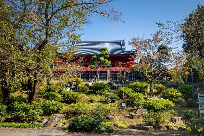 Gelbes Blatt von Ahornen im Herbst an Ueno-Park lizenzfreie stockfotos