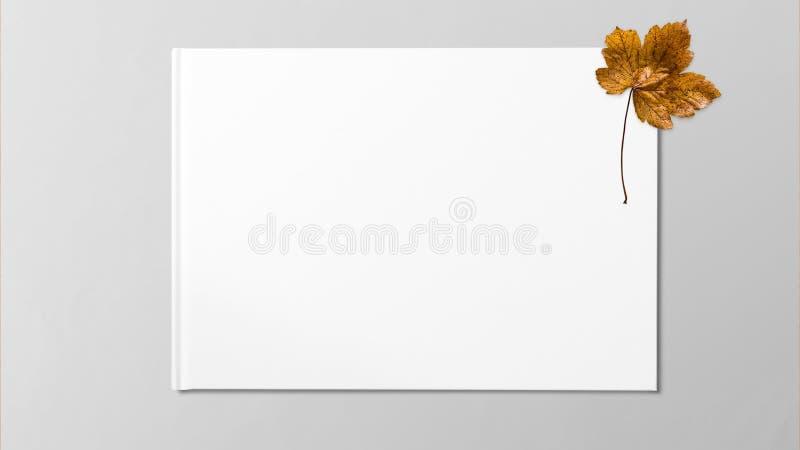 Gelbes getrocknetes Ahornblatt auf weißem Hintergrund stockbild