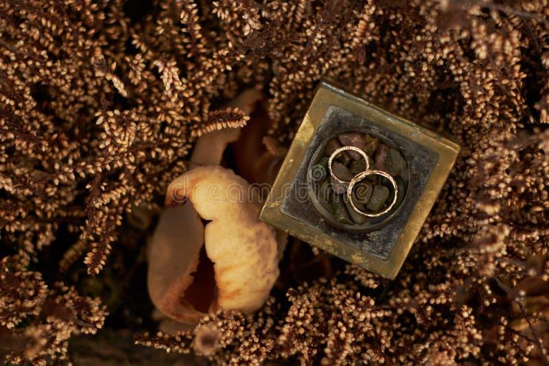 Gelbes Gold der Eheringe auf Anlagen eines braunen Hintergrundes im Herbstsaisonbraunhintergrund stockfotografie