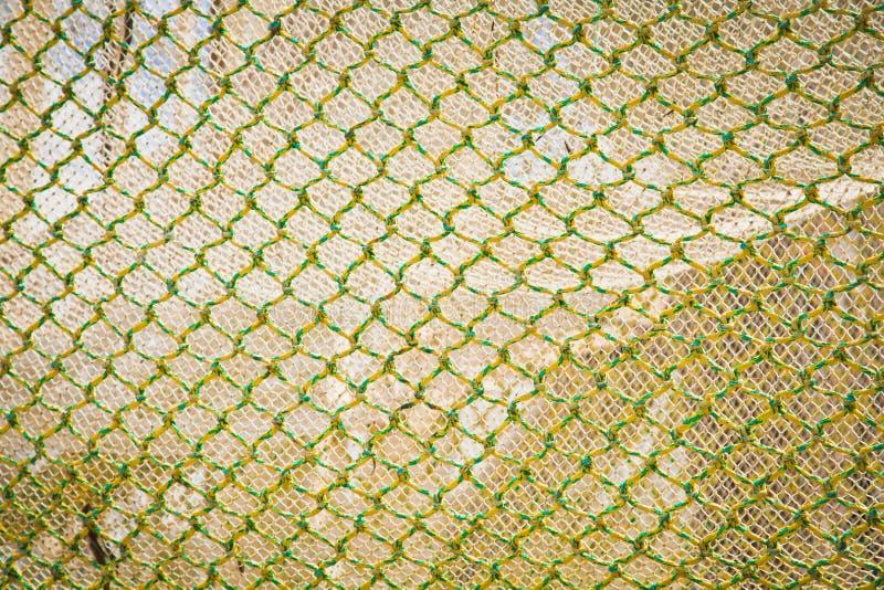Gelbes Grün-Fisch-Netz stockbilder