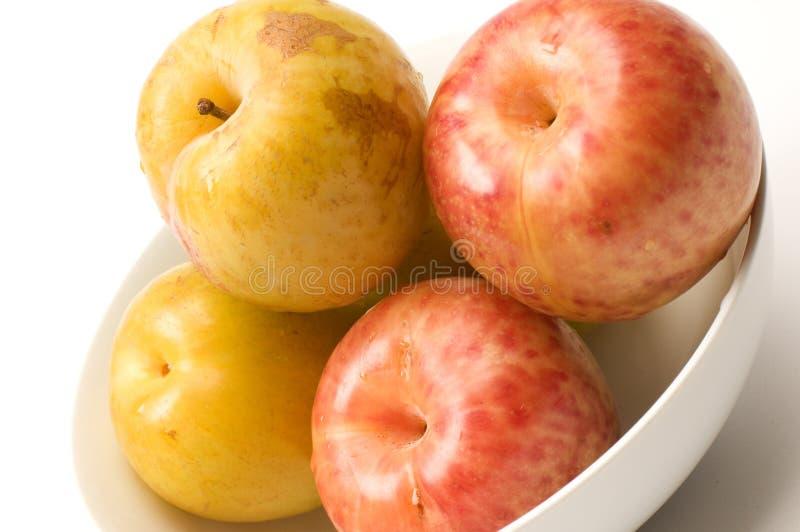Gelbes Grün Sweetie und rote pluot Früchte stockbild