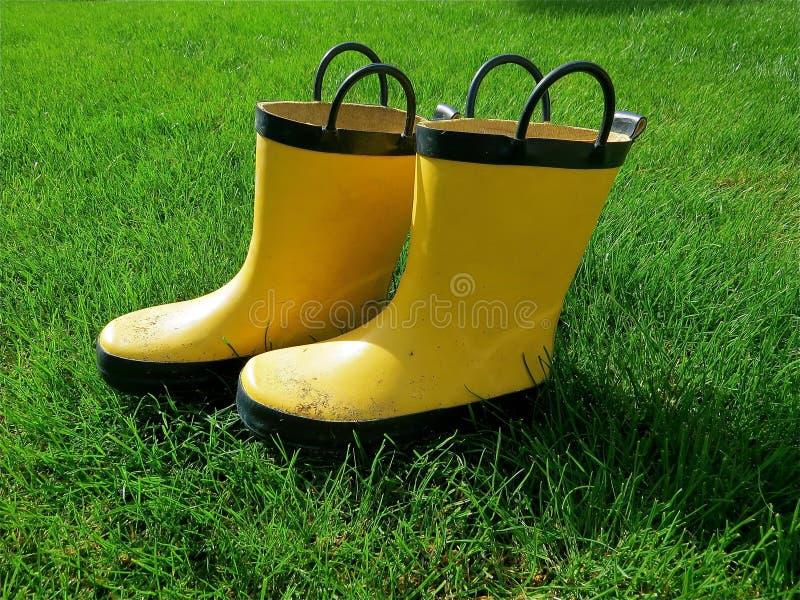 Gelbes Gumboots stockfotografie