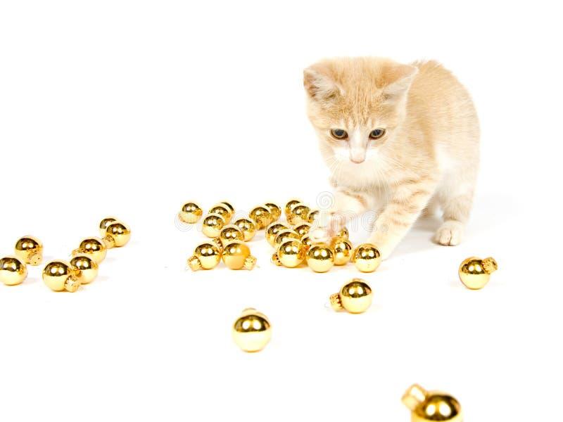 Gelbes Kätzchen, das mit Weihnachtsdekorationen spielt lizenzfreies stockbild