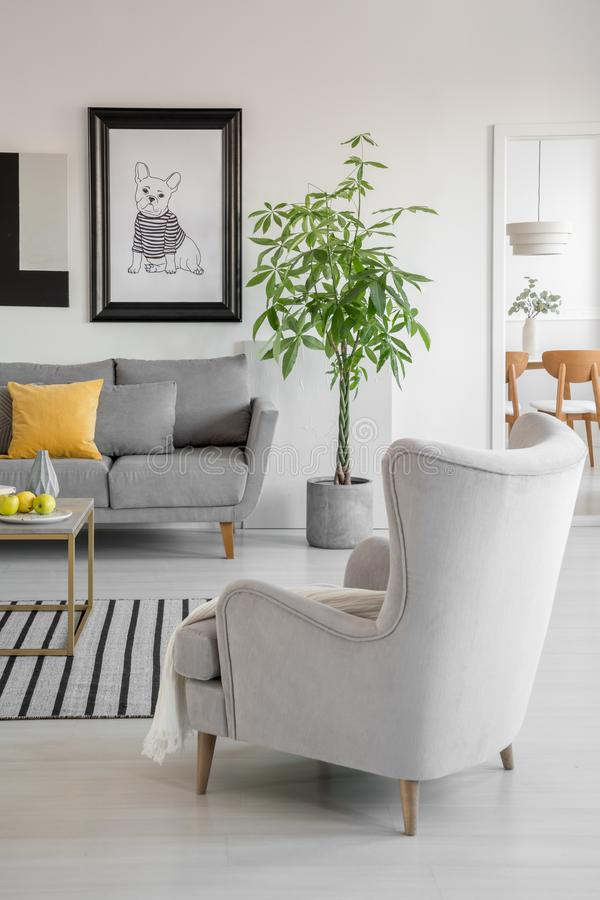 Gelbes Kissen auf grauer Couch im schicken Wohnzimmer mit bequemem Lehnsessel und Grünpflanze im Topf lizenzfreies stockfoto