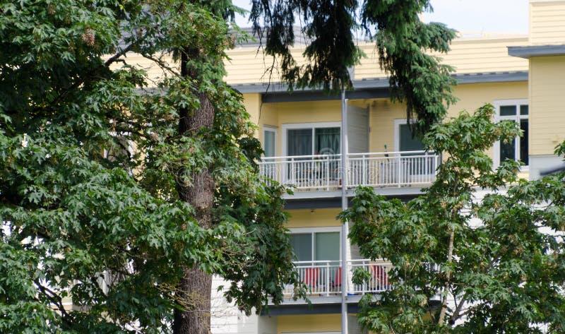 Gelbes Wohngebäude hinter Ahornen und Tannen in der Redmond-Stadtmitte nahe bei Landwirtmarkt lizenzfreie stockfotografie