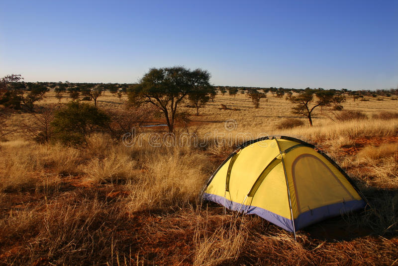 Gelbes Zelt in der Wildnis. lizenzfreie stockfotos