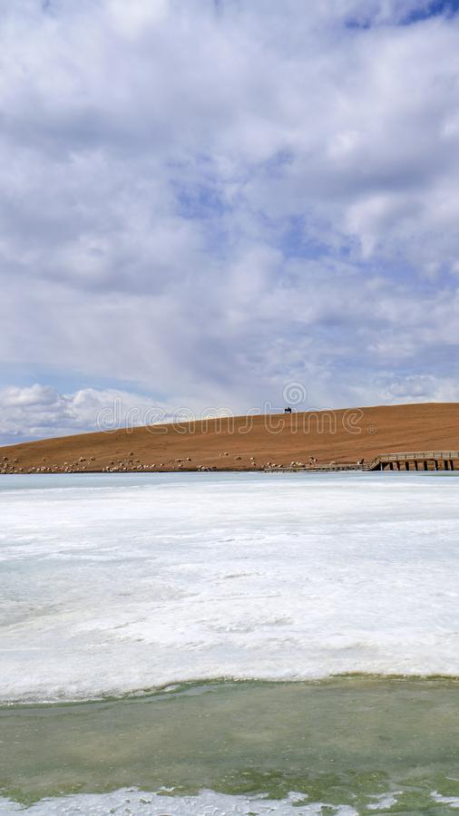 Gelbgras Fluss der Pferde- und des blauen Himmelsweißen Wolken gefrorenes in Bayanbulak im Frühjahr stockfotografie