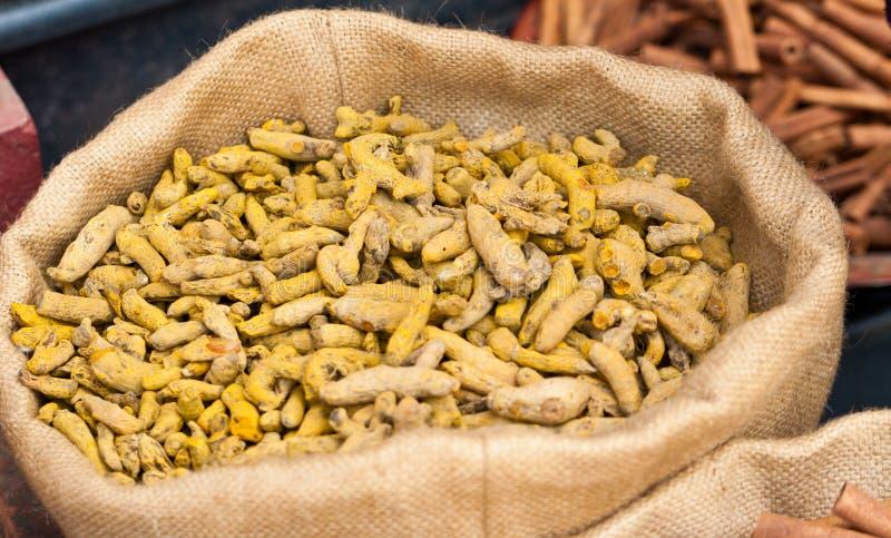 Gelbwurzrhizome in Kerala, lizenzfreie stockfotos