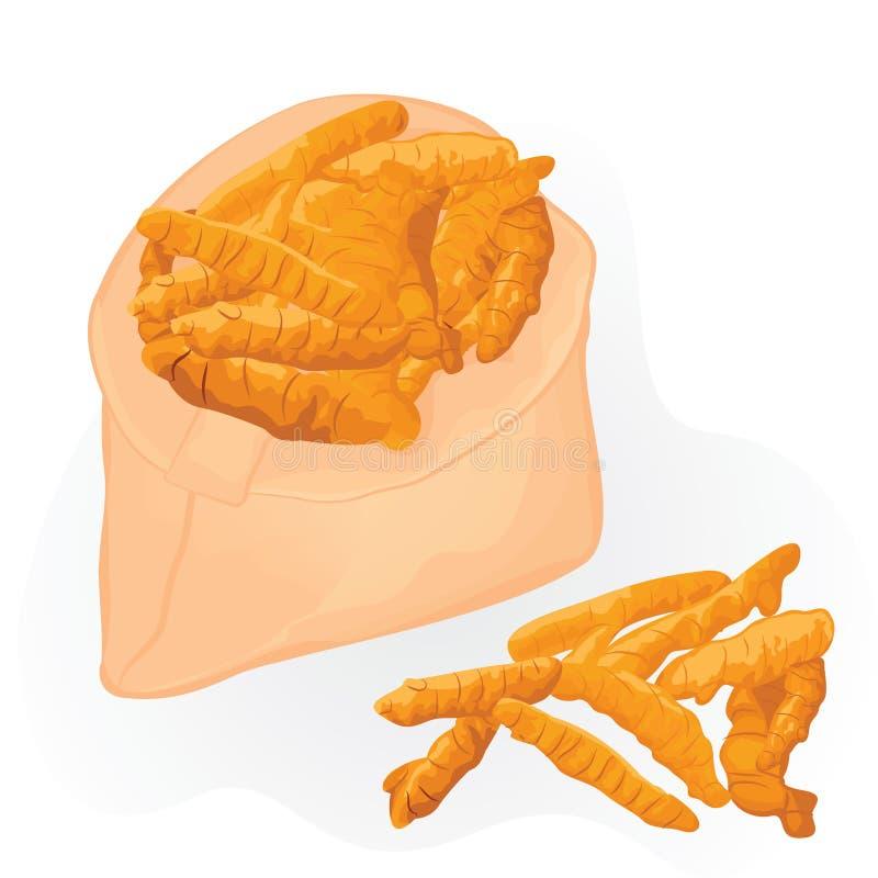 Gelbwurzwurzeln in einer Tasche auf einem weißen Hintergrund stock abbildung