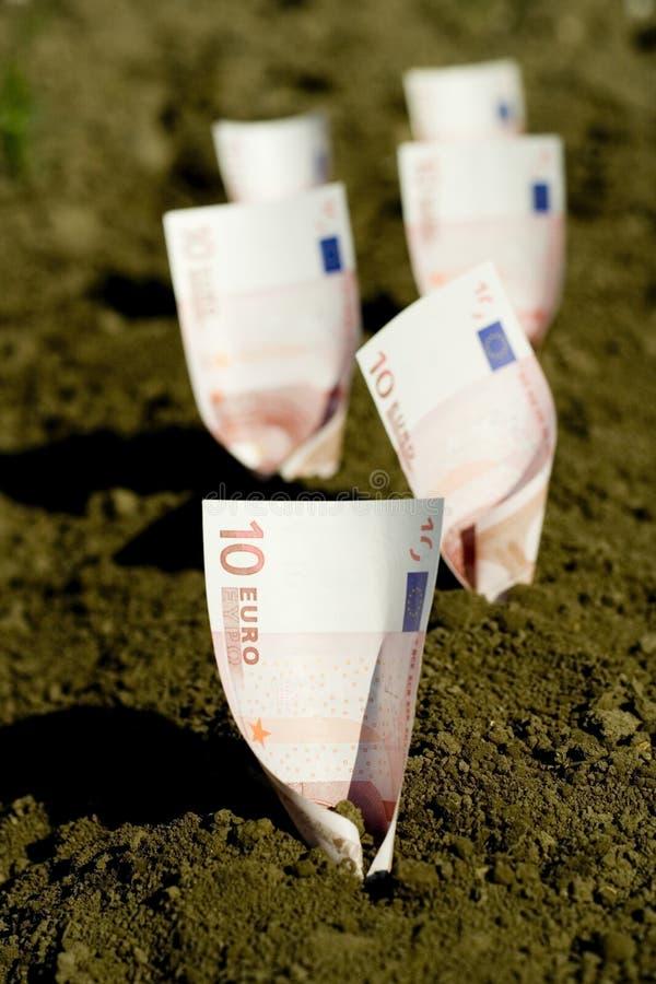 Geld begraben im Boden stockbild