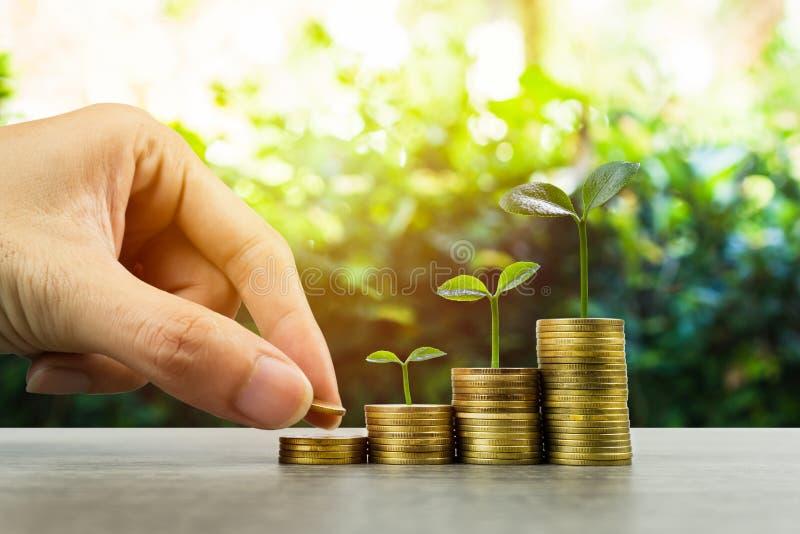 Geld der langfristigen Investition oder der Herstellung mit den rechten Konzepten Eine Geschäftsmannhand, die auf Stapel Münzen a lizenzfreies stockbild