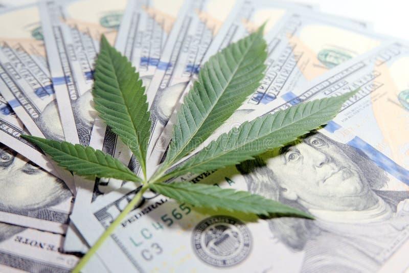 Geld en marihuana Het cannabisblad ligt op de achtergrond van honderd dollarsrekeningen Ondiepe Diepte van Gebied Het concept van royalty-vrije stock foto