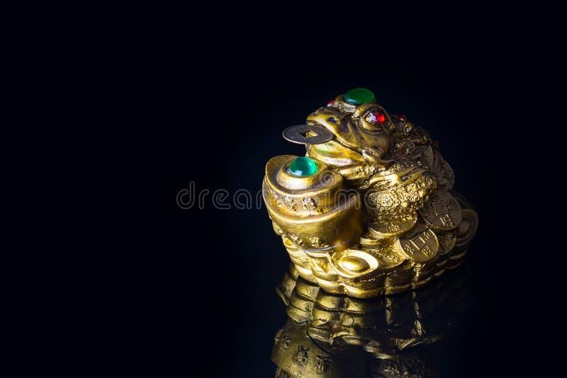 Geld-Frosch mit der Münze, die Reichtum und Wohlstand symbolisiert lizenzfreie stockbilder