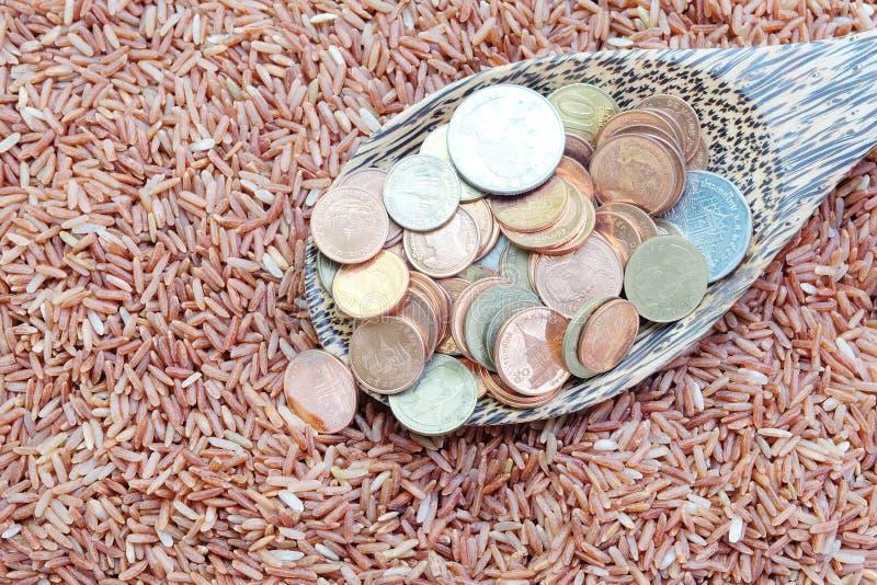 Geld op lepel en rode rijst stock foto's