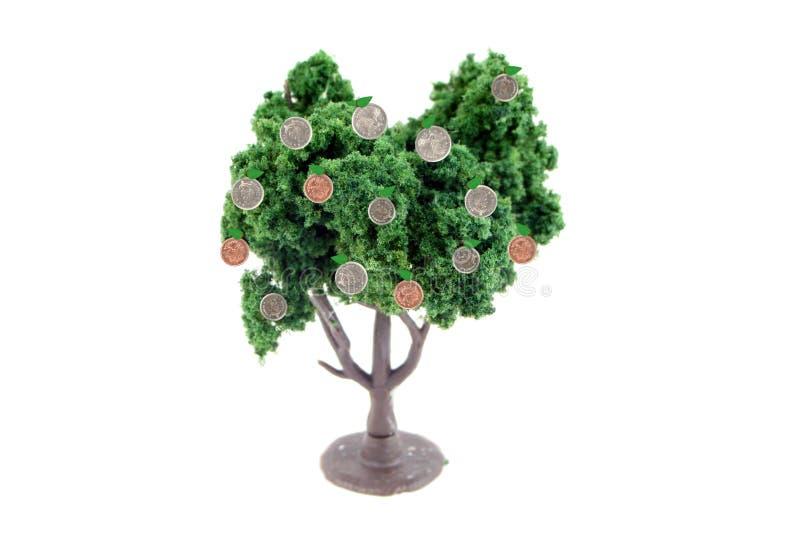 Geld wächst auf Bäumen stockfotografie