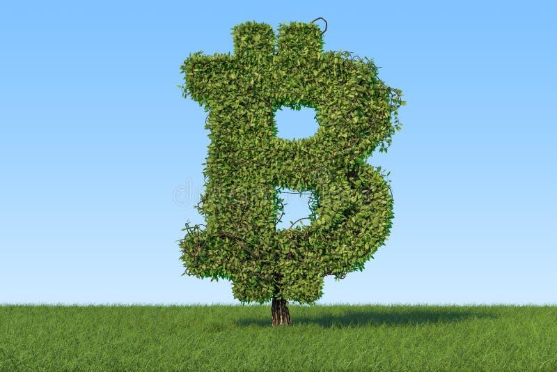 Geldbaum in Form bitcoin Symbols auf dem grünes Gras aga stock abbildung