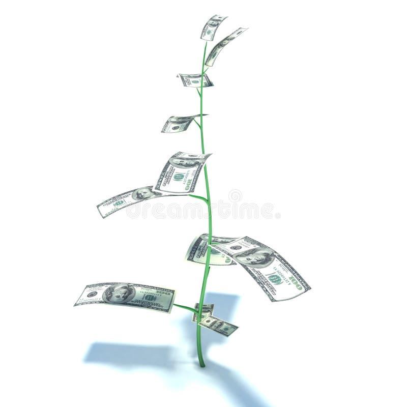 Geldboom met Amerikaanse dollarbankbiljetten in plaats van bladeren royalty-vrije illustratie