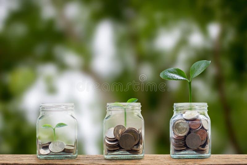 Geldeinsparungen, Investition, Geld f?r Zukunft verdienend, Finanzverm?gensverwaltungskonzept Münzen im Glasgefäß und im Schritt  stockfoto