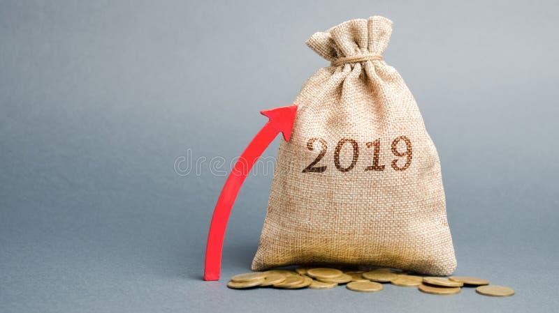 Geldzak met de inschrijving 2019 en omhoog pijl Financi?le Planning Jaarverslag De winstgroei roi ROR Belastingsbetaling, stock foto's