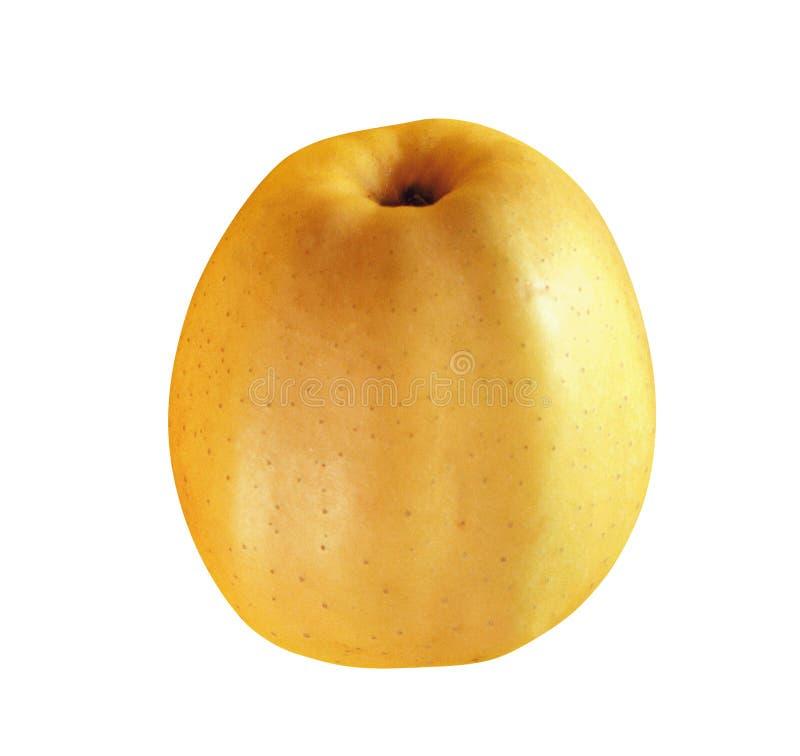 Gele appel op een wit royalty-vrije stock afbeeldingen