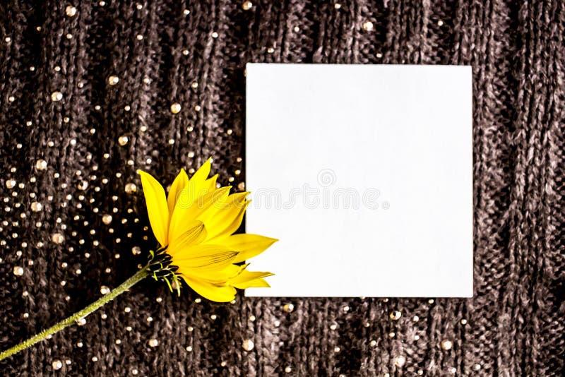 Gele bloem op een warme geweven grijze gebreide achtergrond Witte kaart, plaats voor tekst stock foto's