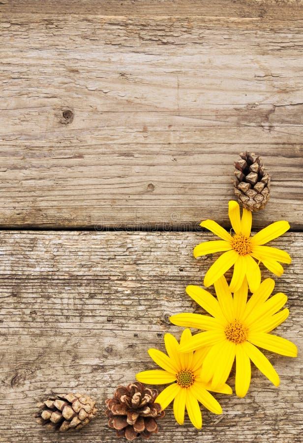 Gele bloemen en kegels op rustieke houten achtergrond in de herfst flatley verticaal royalty-vrije stock foto