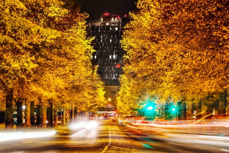 Gele de herfstbomen en lang zwart hotel bij nacht in Tampere, FI royalty-vrije stock fotografie